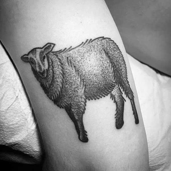 тату овца чб