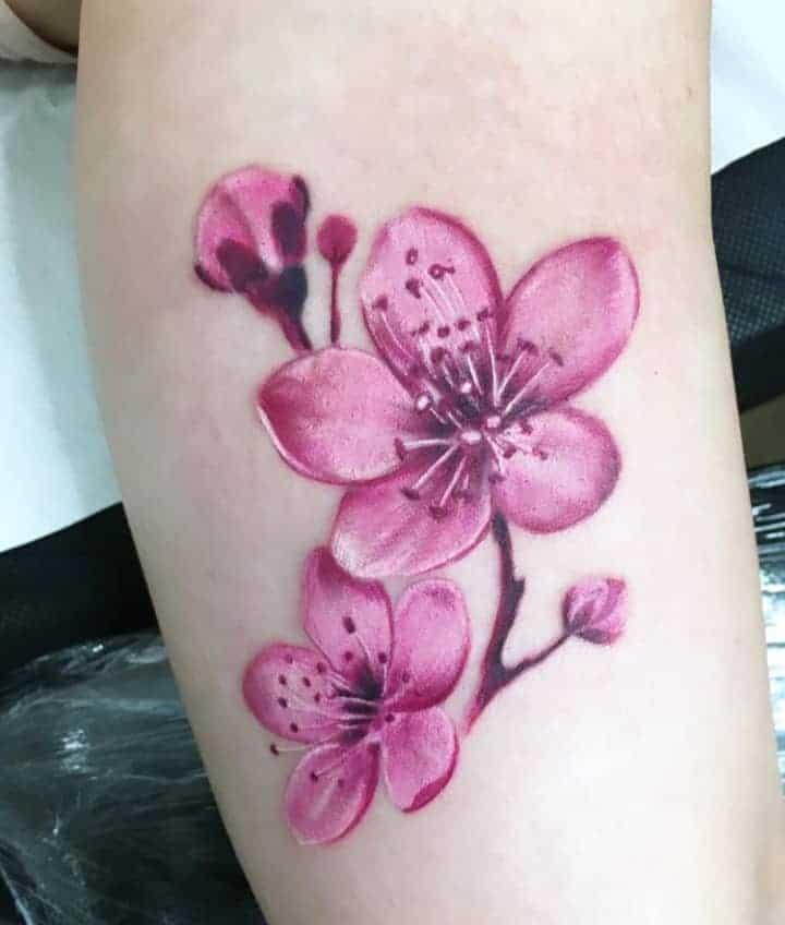сакура цветы тату