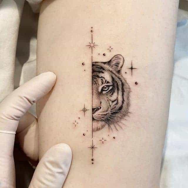 тату тигр и звезды