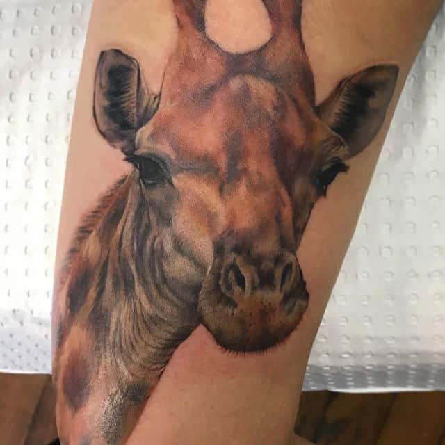 жираф тату реал