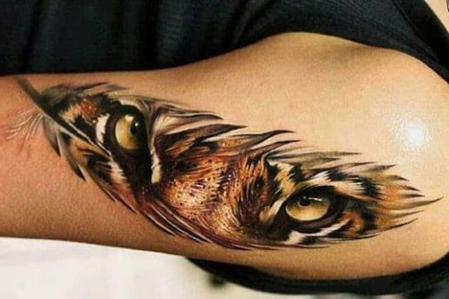 тигр перо