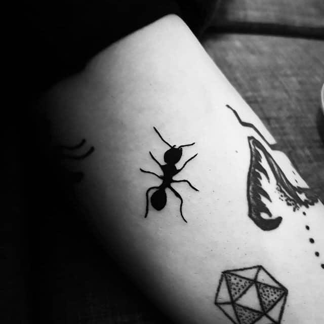 тату муравей на руке
